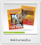 Wektormedia